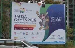 tafisa-1